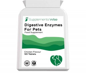 digestive enzymes for dogs