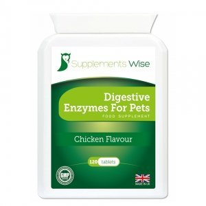 digestive enzymes for pets